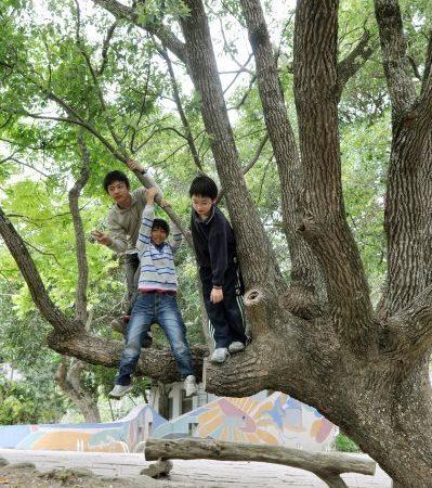 愛.在樹下!「世界地球日」大家一起來