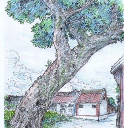 北門土地廟後的大樹公