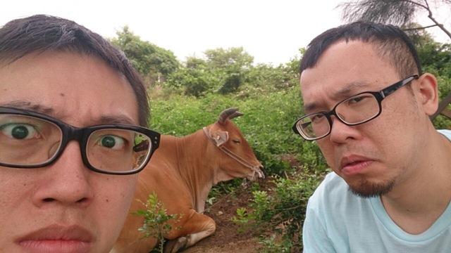 對牛說漫才