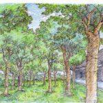 和風輕拂的林間學園