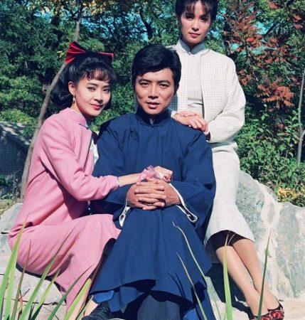 瓊瑤浪漫故事-《婉君》