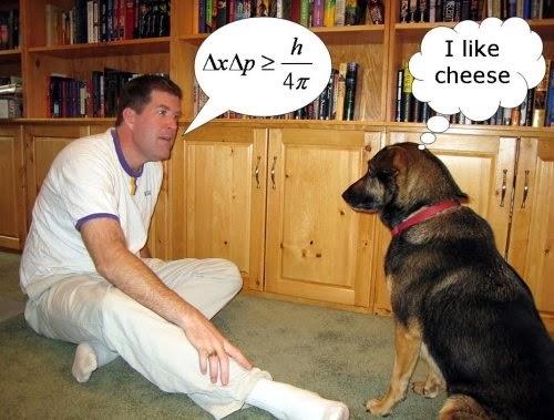 人跟動物真的能溝通嗎?「動物溝通師」來幫你!