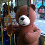 ☆ 週五輕鬆遊:韓國泰迪熊 萌到讓你有錯覺!