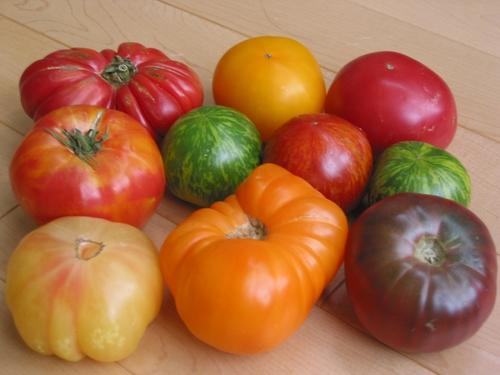 你分得出聖女、玉女小番茄差別嗎?