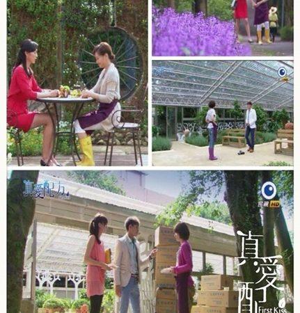 造訪浪漫香草園 享受滿滿包圍的幸福感