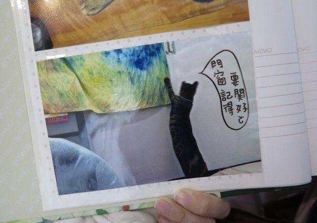 友善的旅人客廳 毛孩子也愛「晃晃二手書店」!