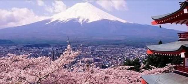 【週二好康分享】日本自由行攻略密技大彙整