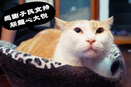 【Fanily閃亮星大賞】倒數七天!黃阿瑪擁萬千子民一夕逆轉衝向冠軍!