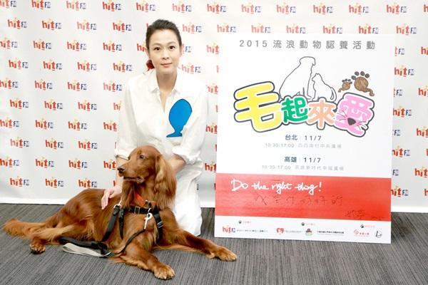 劉若英擔任「毛起來愛」形象大使  巧手按摩毛小孩