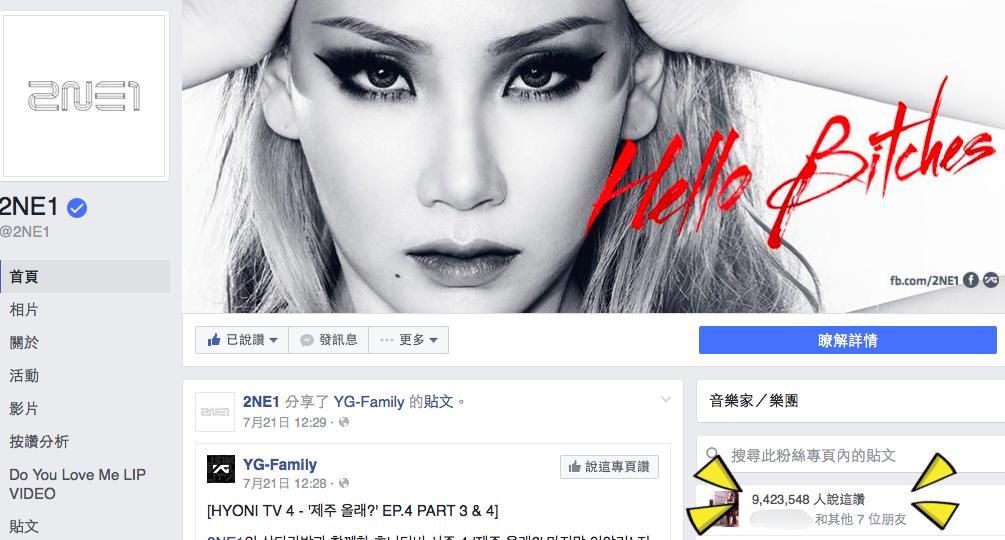 圖/摘自2NE1臉書
